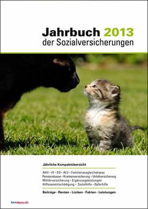 Jahrbuch der Sozialversicherungen 2013