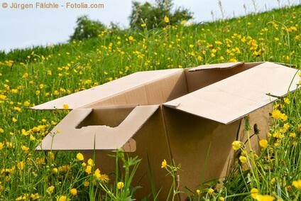 Verpackungen, Abfall auf der Wiese - ein grosses Problem, das mit Verantwortung zu tun hat