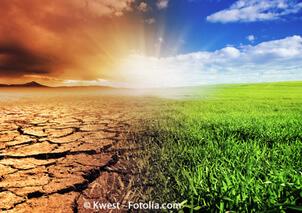 Nachhaltigkeit, wir haben die Wahl ...