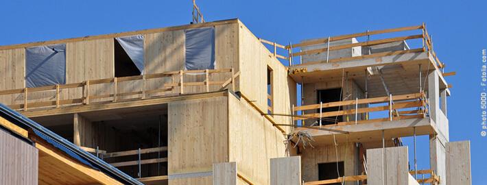 Haus bauen mit Holz: nachwachsende Ressourcen nutzen