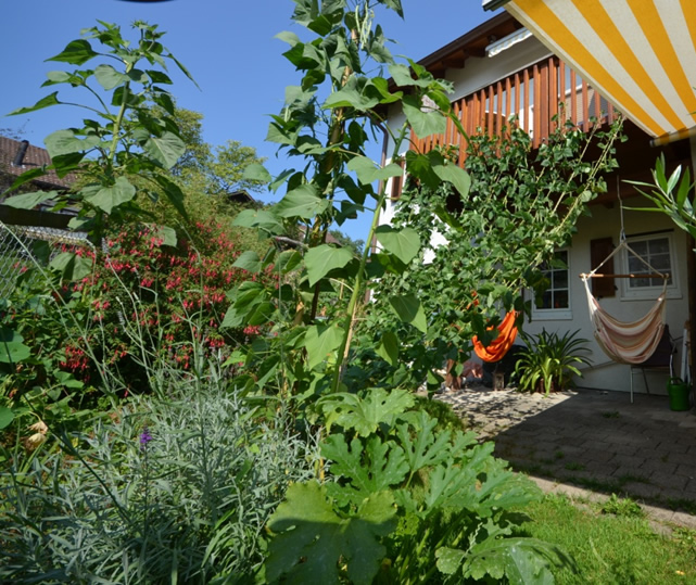 Gartengestaltung wo Raum enger wird