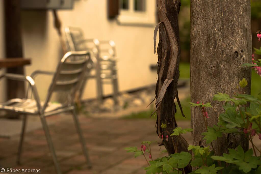 Pergola und Sitzplatz: Entspannung im natürlichen Lebensraum